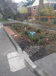 11th ave rain garden work party and