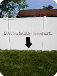 Where Beauty Meets Function Vinyl Fence Lessons Learned