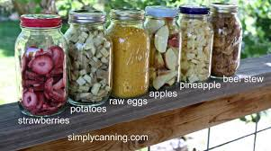 diy freeze dryer do it yourself at