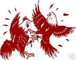 Roosters Cock Fighting Car Or Truck Vinyl Decal Sticker 31286066