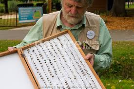 Nature Picture Library Scientist Ivan Wright with sample of pinned ...