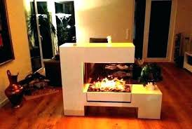 double sided electric fireplace logs