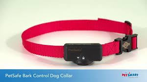 Petsafe Bark Control Dog Collar Dog Bark Control Petsmart