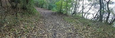 Trailløb | Guide til hvordan du lære at elske trailløb | Bliv ét ...