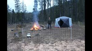 Spring Camping With Electric Fence In Grizzly Bear Territory Youtube