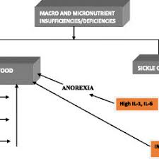 pdf precipitating factors and targeted