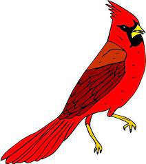 Amazon Com Vibrant Red Cardinal Bird Etched Vinyl Stained Glass Film Static Cling Window Decal Home Kitchen
