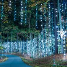 overnight packages fantasy in lights