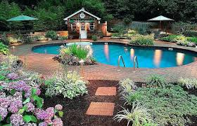 Outdoors Pool Landscaping Ideas Around And On A Budget Inground Backyard Swimming Small Area Plants Crismatec Com