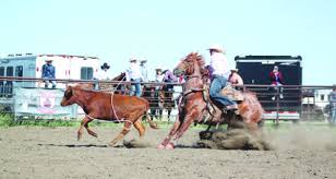 Kerrobert Rodeo provides plenty of action | West-Central Cross Roads