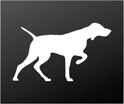 Vizsla Vinyl Decal Hungarian Pointer Car Window Laptop Dog Silhouette Kandy Vinyl Shop