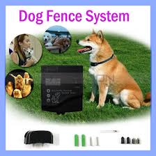China Professional Grade Electric Dog Fence Complete Installation Kit For Electronic Fencing System With One Collar China Dog Fence System And Outdoor Dog Fence Price