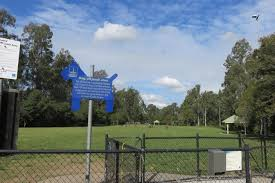 Off Leash Dog Parks Near Awesome Playgrounds Brisbane Kids