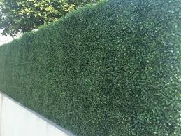 Builddirect Century Home Living Fence Covering Artificial Plane Hedge Boxwood Artificial Plants Living Fence Small Artificial Plants