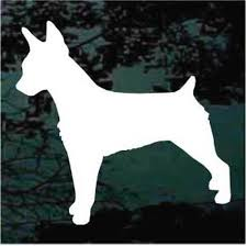 Solid Rat Terrier Decals Car Window Stickers Decal Junky