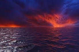 موجات خلفية السماء الطيور الأفق غروب الشمس البحر السحب