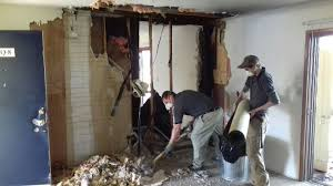 Water Damage Restoration: Why Do You Need the Professionals ...