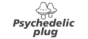Buy DMT | Psychedelic Drug | Psychedelic-plug