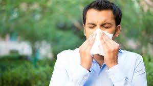 how to stop sneezing 6 home remes
