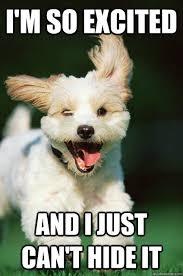 That weekend feeling! - Funny Animal Photos | Facebook