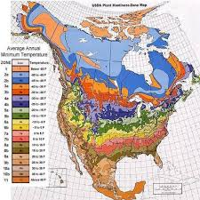 plant hardiness zone maps perennial