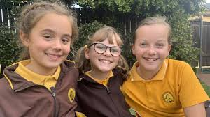 How every Illawarra school compares for teacher student ratios   Daily  Telegraph