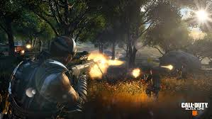 blackout in call of duty black ops 4