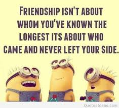 funny bestfriends minions quotes cartoons memes images