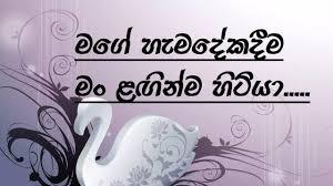 friendship whatsapp status sinhala status sinhala quotes