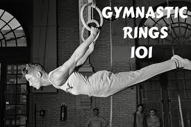 gymnastic rings 101 why to use them