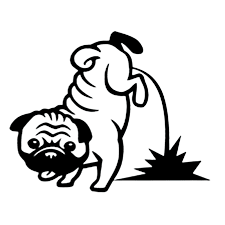 Cs 1679 18 6 15cm Pee Pug Reflective Funny Car Sticker Vinyl Decal Silver Black For Auto Car Stickers Styling Car Decoration Car Stickers Aliexpress