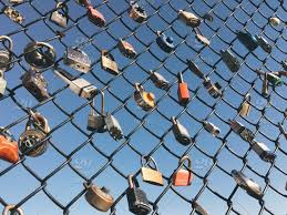 Locks On A Chain Linked Fence Stock Photo 6a5ea296 F4c3 4fef A48f D78baafdf3f1