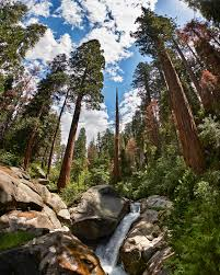 QUICK-TRIP GUIDE TO SEQUOIA NATIONAL PARK - Love & Loathing Los Angeles