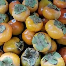 persimmons the divine fruit awaken