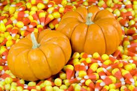 fall pumpkin wallpapers top free fall