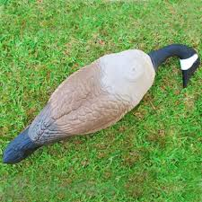 Goose Geese Repellent Deterrent Natural Goose Repellent Products
