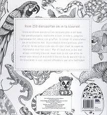 Dieren Kleuren 35 Kleurplaten Amazon Co Uk Lucy Engelman