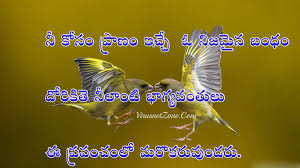 real life quotes in telugu hd virus net zone