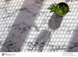 Marble Table With Palm Leaves Shadow A Royalty Free Stock Photo From Photocase