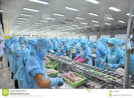 1,731 Seafood Factory Photos - Free ...