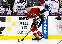 Adam Gaudette - Hockey's Future