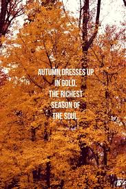 nature quotes fall quote on a tree gold leaves angie