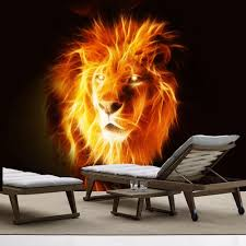Shop Full Color Lion Fire Wild Nature Animal Full Color Wall Decal Sticker Sticker Decal Size 22x30 Frst On Sale Overstock 15259188