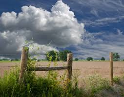 Texas Removal Fence Statute Texas Agriculture Law