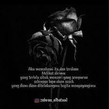 gambar bunga mawar hitam layu terbaik gambar bunga