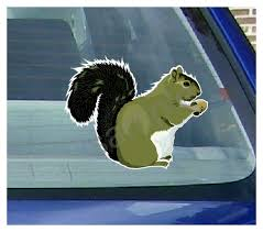 Squirrel Window Decal Vehicle Stickers Westickerthang 7 95
