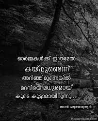 beautiful malayalam life quotes kwikk kwikk