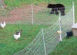 Electric Fencing Electric Fence Mesh Fencing Chicken Runs