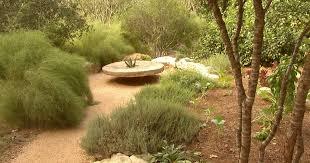 drought garden balance season 19
