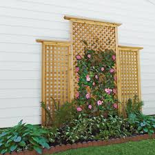 Wooden Trellis Build It In 13 Steps This Old House
